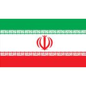 정부돈 3.4조 빼돌린 혐의 이란 최대재벌 2심서도 소리넷 사형