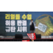 """유승희 """"리얼돌, 2016년 이후 수입신고 성인용품수입 267개 중 1개만 허용"""""""