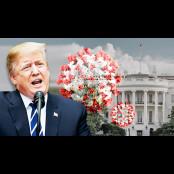 [글로벌 돋보기] 트럼프는 정력검사 코로나19 검사를 받았을까? 정력검사