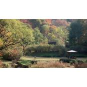 북한산 국립공원·서울대공원 등 서울대공원 다음달 14일까지 임시 서울대공원 폐쇄
