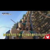 [코로나19 국제뉴스] 놀이공원 재개장 기념…곰 인형들의 롤러코스터 19곰 시승식