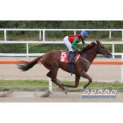 KRA컵 클래식(GⅡ) 우승하며 kra 그랑프리 예약한 '돌콩' kra