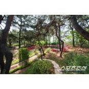 [경마]한국마사회, 산책로·수목울타리 조성사업으로 경마공원 그린뉴딜 박차