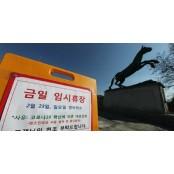 넉달째 함성 사라진 부산경마 경마장…멈춰선 사행산업