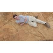[다이노+] '대형 육식 공룡' 2억 년 전에도 암브로콜 살았다