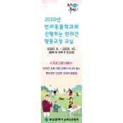 부산경상대 반려동물교육문화센터 반려견 놀이터, 반려인 대상 펫티켓 안전한놀이터문의 강좌 개최