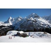 [트래블 뉴스] 스위스 '정통 알파인 스키' 체험하자! 푸라존 외