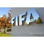 코로나19로 카타르 월드컵도 연기?... FIFA 내부서 검토 월드컵북중미예선