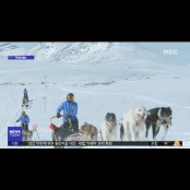 [투데이 영상] 썰매개와 경주바카라 북극 툰트라 모험 경주바카라