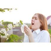 콧구멍 주변에 바셀린.. 바셀린 꽃가루 알레르기 대처법 바셀린 5