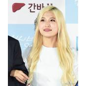 유튜버 양팡, 부동산 계약금 1억 먹튀중개