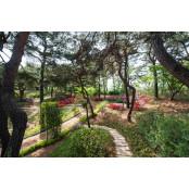 한국마사회, 경마공원에 '馬 경마공원 특화 산책로' 조성한다 경마공원