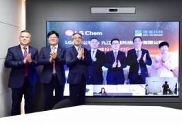 LG화학, 中 동박기업