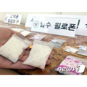울산해경, 양귀비·대마·마약류 투약자 특별단속