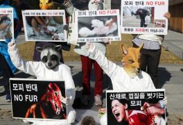 '모피 사용 반대한다'