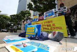 한국동물보호연합 '상