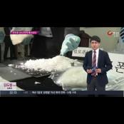 [뉴스쇼 판] 부녀자들과 섹스파티 광란의 마약 섹스파티…27명 섹스파티 검거