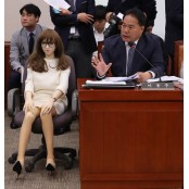 """국감장 등장한 리얼돌…""""섹스토이 산업 육성하자"""" 성인섹스용품"""