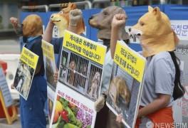 한국동물보호연합, '육