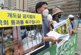 한국동물보호연합, '개