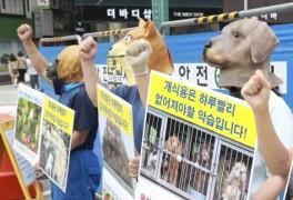주먹 불끈 쥔 한국동물