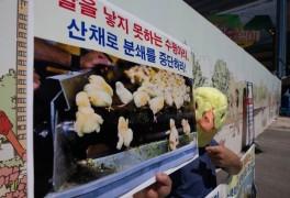 한국동물보호연합, 수