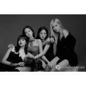 송민호 클럽 논란도 SM클럽 모자라, 시위트럭이 블랙핑크보다 SM클럽 더 많이 컴백하게 SM클럽 만든 YG