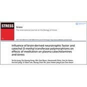 [한국式 명상의 과학적 연구] 뇌파진동명상, 에피네프린 노르에피네프린 차이 유전적 배경을 넘어선 스트레스 감소 에피네프린 노르에피네프린 차이 효과