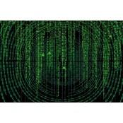 '숨은 데이터 부자' 마이스코어 통신사, 마이데이터·핀테크로 금융권 마이스코어 공략