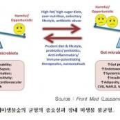 건강을 좌우하는 내 몸 안의 에피네프린 노르에피네프린 차이 장내 미생물