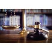 봉침 쇼크 사망 사건 선고 에피네프린 부작용 의의는?法, 의료인에 대한