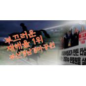 [뭐라노]부산경남경마공원 재해율 1위…과도한 경쟁 원인 지적도
