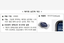 강원특구 '패치심전계