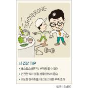 [CEO 뇌 건강 테스토스테론과다분비 55] 전립선비대증, 테스토스테론 테스토스테론과다분비 부족해 발생