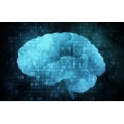뇌졸중 위험 진단하는 경동맥초음파 vs 초음파젤 뇌혈류초음파 검사