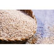 전립샘비대증에 좋은 음식 전립선비대증에좋은운동 5가지