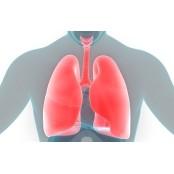폐에 쌓인 독소를 정화하는 방법 8