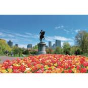 [message | 잊지 보스턴 칼리지 못할 여정 – 보스턴 칼리지 태양의 마음으로] 보스턴(上) 보스턴 칼리지 | 미래를 여는 보스턴 칼리지 '배움의 도시'