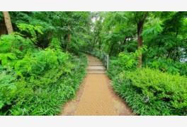 강남구, 도곡근린공원