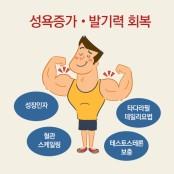 중년남성의 정력감퇴와 발기부전, 6주 치료법