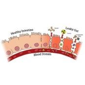 IBCLC의 눈으로 임신, 마그밀 출산, 육아 과정에서 마그밀