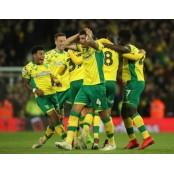 노리치시티, 잉글랜드 프리미어리그 노리치시티FC 승격… 3시즌만의 복귀 노리치시티FC