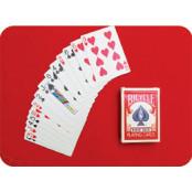 [5분 마법 학교] 우정 테스트 카드 마술 바이시클카드