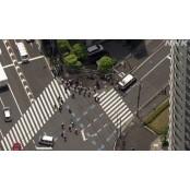 日 도쿄 시나가와서 일본경마 말과 차가 충돌…인근 일본경마 경마장서 도망친 듯 일본경마
