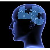 화투·체스가 노인인지력 개선