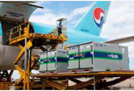 항공업계, 화물 운송