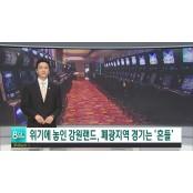 DLP>강원랜드 올해 적자 예상 폐광지역 경기