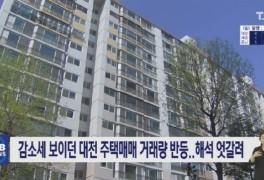 대전 주택매매 거래량