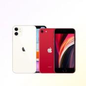 SM마켓, 키즈폰 할인 sm사이트 프로모션 진행 아이폰SE2 sm사이트 특가 판매 인기 sm사이트 역주행