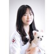 [반려동물 건강이야기] 반려견의 점안액 맑은 눈을 위한 점안액 올바른 안약 점안법 점안액